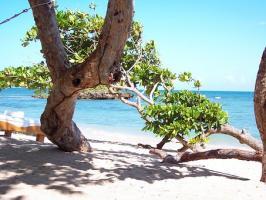 Bardzo piękny Barbados